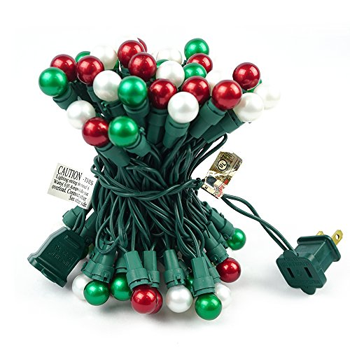 Indoor Outdoor Led Christmas Lights in US - 2