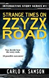 img - for Strange Times on Zzyzx Road (Interactive Story Series Book 1) book / textbook / text book