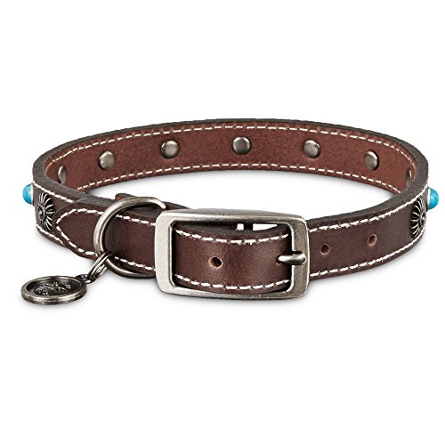 Bond & Co. Turquoise & Brown Leather Stud Dog collar, For Neck Sizes 18-21, Large/Extra Large, Large/X-Large (Dog Turquoise Collar)