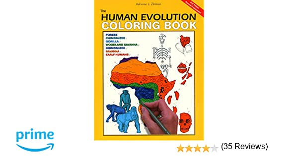 Human Evolution Colouring Book | Coloring Page