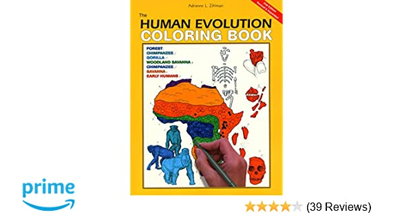 Amazon.com: The Human Evolution Coloring Book (9780062737175 ...