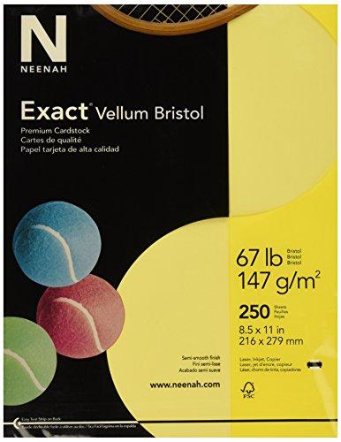 - Exact 81338 Vellum Bristol Paper, 67 lb, 92 Bright, 2.1