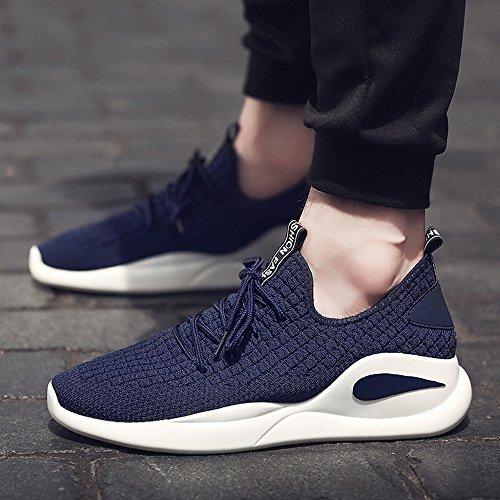 Men's Shoes Feifei Spring and Autumn Leisure Wear-Resistant Sports Shoes 3 Colors (Color : Blue, Size : EU42/UK8.5/CN43)
