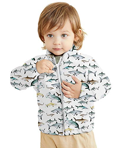 Unisex Winter Sherpa Jacket for Boys Girl Fall Warm Outwear Little Kids Full-Zip Coat 1st Birthday Newborn Outwear(Cartoon Shark 1 Year Old)