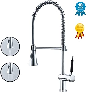 WANJINLI Pull Down Kitchen Faucet, Single Handle Commercial Modern Solid Brass with Pull Out Spray Nozzle, Single Lever Kitchen Sink Faucets, Lead Free, Dual Functions Kitchen Faucets