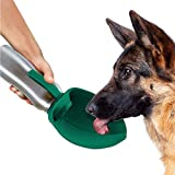 PupFlask Portable Water Bottle For Walking | 24 OZ Stainless Steel | Convenient Dog Travel Water Bottle Keeps Pup Hydrated | Portable Dog Water Bowl & Travel Water Bottle For Dogs (Quetzal Green)