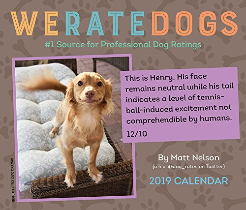 WeRateDogs 2019 Day-to-Day Calendar cover