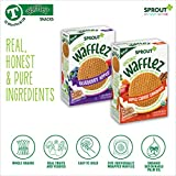 Sprout Organic Baby Food Toddler Snacks