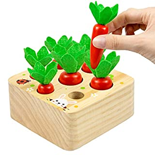 LESES Wooden Toys Montessori Educational Toddler Learning Toys for Preschooler Size Sorting Game Learning Games Fine Motor Skill Toys Gifts for 1 2 3 Years Old
