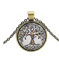 LnLyin Glass Bottle Necklace Natural Dandelion Seed in Glass Necklace Make A Wish Silver Plated Jewelry