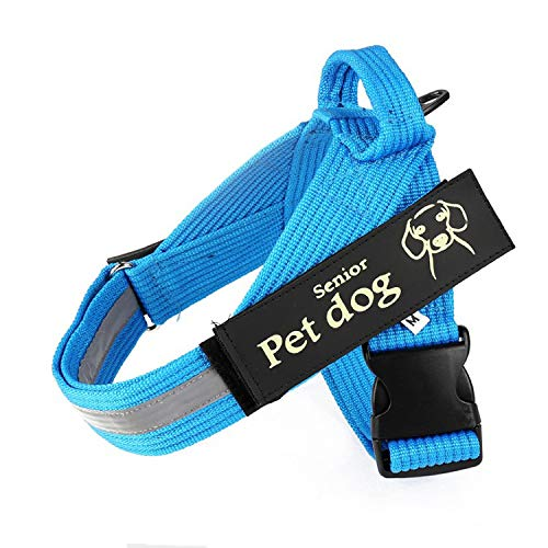 City letter trade Medium-Sized Large Vest-Type Night-Reflective Strips are Safer for Dogs at Night. Reflective Pedestrians and Drivers can Notice Dogs When Illuminated by Lights.