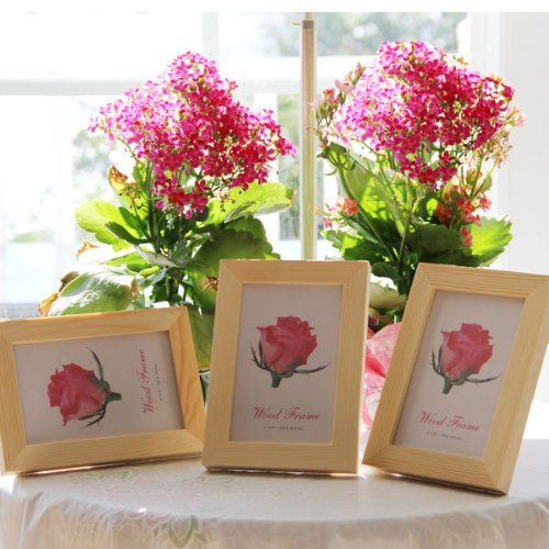 Set of 3 Solid Wood Picture Frames 5x7