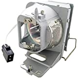 Litance Projector Lamp Replacement for Optoma BL-FP210B/SP.77011GC01 HD28DSE