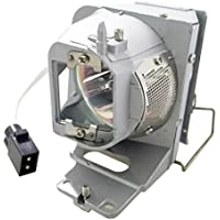 Litance Projector Lamp Replacement for Optoma BL-FP210B / SP.77011GC01 HD28DSE