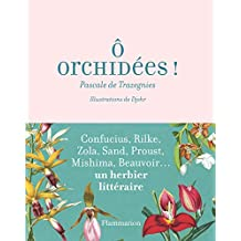 Ô orchidées (Jardin) (French Edition)