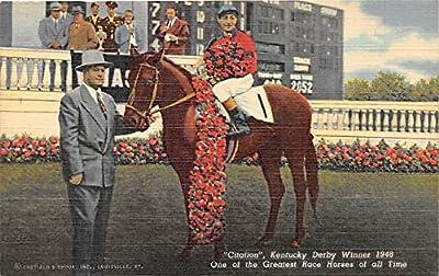 Citation, Kentucky Derby Winner 1948 Old Vintage Horse Racing Postcard Post Card