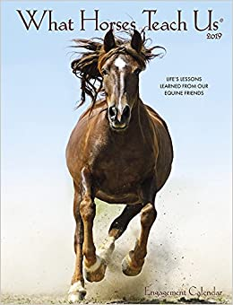 What Horses Teach Us 2019 Engagement Calendar: Willow Creek Press