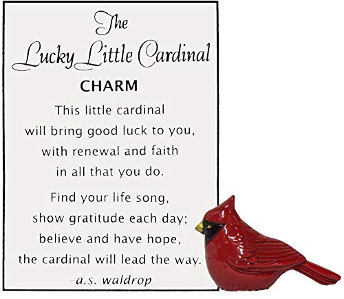 (Ganz Lucky Little Cardinal Pocket Charm with Story Card,One)