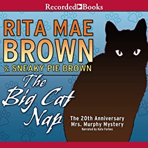 The Big Cat Nap Audiobook