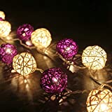 9.8 Feet 20 Led Rattan Ball Fairy String Lights Plug in, Flexible Romantic Warm Lighting for Home Decor (Purple)