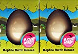 Set of 2 Grow Your Own Reptile Animals Hatching Novelty Eggs