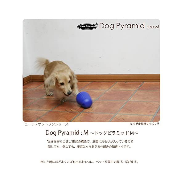 Nina Ottosson Dog Pyramid Interactive Puzzle Mental Stimulation Brain Game 2