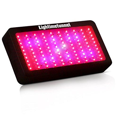 Lightimetunnel Spectrum Indoor Plants Lighting
