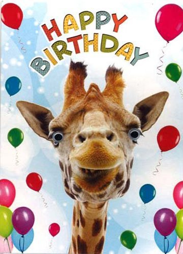 amazon com birthday card happy birthday funny animal giraffe