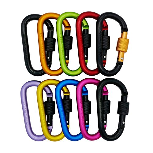 KUNSON 10PCS Aluminum Alloy D-ring Keychain Carabiner Locking Spring Hook Clip D-Shape Snap Backpack Water Bottle Climbing Gear Accessories EDC Camping Hiking Tent Tools Multiple Colors by KUNSON