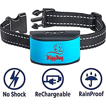 Citronella Dog Collars Amazon