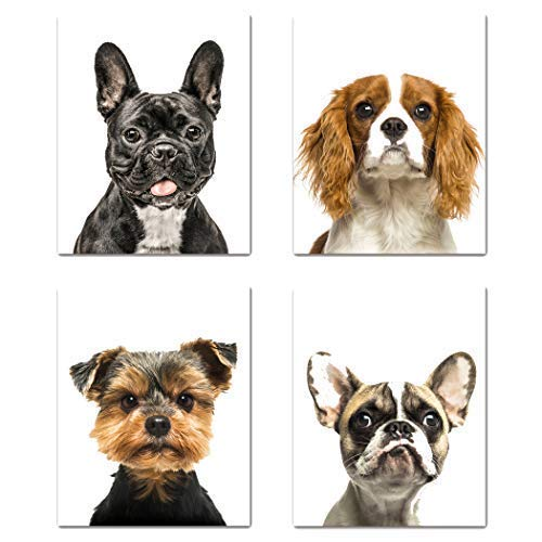 Set of 4 Cute Dogs Art Wall Prints - Unique Nursery Wall Decor, Baby Kids Room Animal Wall Art Pictures, Office Wall Décor, French Bulldog, King Charles Spaniel, Yorkshire Terrier, 8x10, Unframed