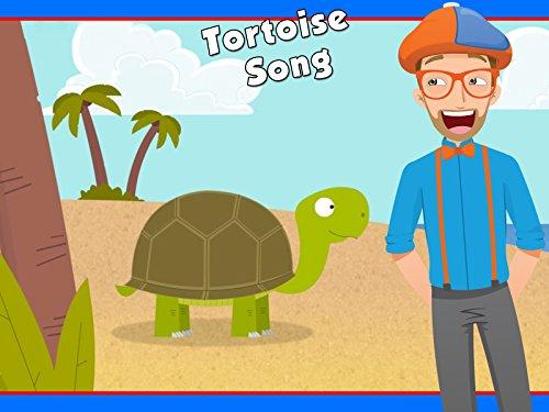 (The Tortoise Song by Blippi - Animals for Children)