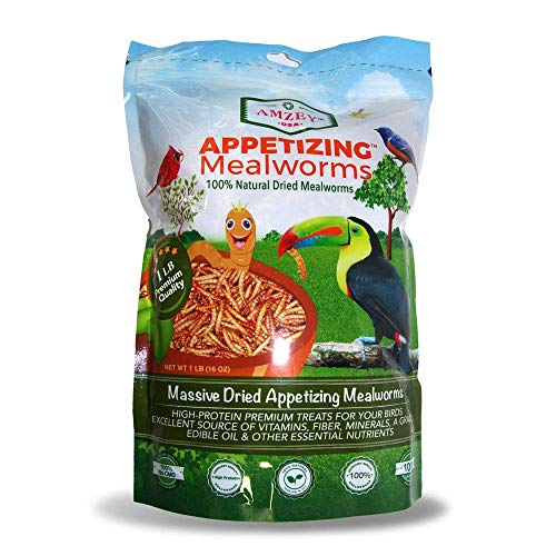 Amzey Dried Mealworms 1 LB, 100% Natural for Chicken Feed, Bird Food, Fish Food, Turtle Food, Duck Food, Reptile Food, Non-GMO, No Preservatives, High Protein and Nutrition, Zipped Bag