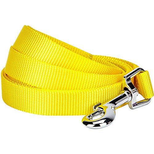 Blueberry Pet 19 Colors Durable Classic Dog Leash 5 ft x 5/8, Blazing Yellow, Small, Basic Nylon Leashes for Dogs