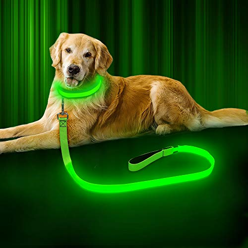 BSEEN LED Dog Leash - USB Rechargeable 47.2 inch 120 cm Night Safety Pet Leash LED Strip to Keep You and Your Dog Safe (Fluorescent Green) (Light Leash)