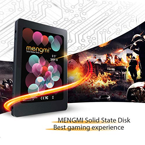 mengmi 120GB 2.5 Inch SATA III Internal SSD Solid State Drive for PC/Laptop (SSD 120GB)