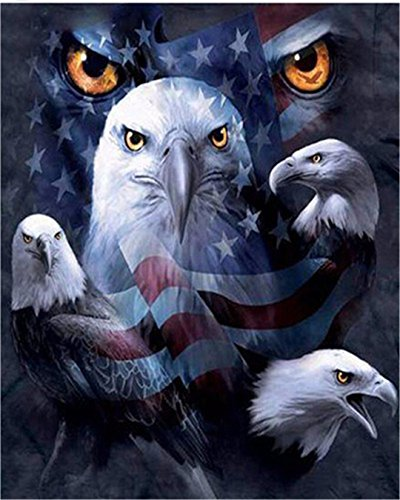 Kuwoolf 5D DIY Diamond Painting Crystal Eagle American Flag Cross Stitch Embroidery Animals Full Square Drill Diamond Pattern Home Decoration -C (Eagle Flag Embroidery)