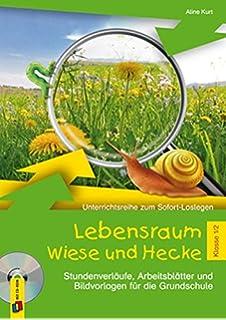 Feld- und Wiesentiere - Fotokarten mit Sachinfos: Amazon.de: Heike ...