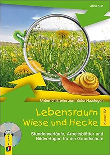 Lebensraum Wiese und Hecke - Klasse 1/2: Stundenverläufe ...