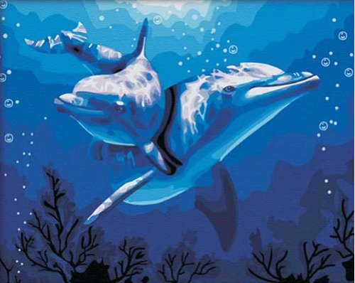 Diy oil painting, paint by number kit- Dolphins love(2) 1620 inch. Dolphins Paint By Number