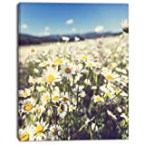 Design Art Mountain Plain with Daisy Flowers Large Flower on Canvas Art Wall Photgraphy Artwork Print