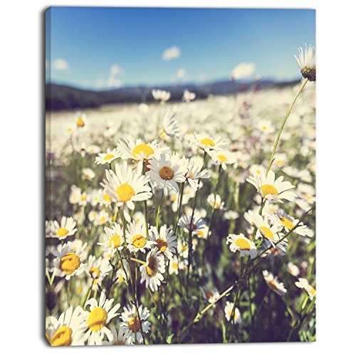 Design Art Mountain Plain with Daisy Flowers Large Flower on Canvas Art Wall Photgraphy Artwork Print by Design Art