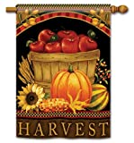 Harvest Basket Fall Autumn House Flag Review