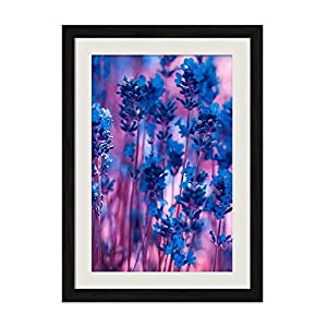 DZ.HAIKA Blue Lavender Flowers Purple - Natural Scenery Art Print Home Decor Wooden Frame Poster(Black Frame Vertical 14x20inch) 87