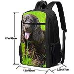 Irish Water Spaniel Multiuses Fation Backpacks School Bookbag Shoulder Bag Casual Daypack Laptop Bag 17 Inch Irish Water Spaniel 5
