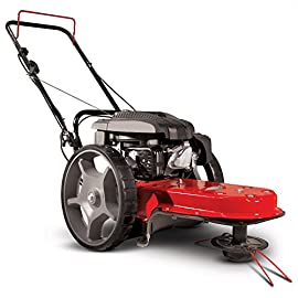 Earthquake 28463 String Mower, Red/Black 96 VERSATILE - One all-terrain machine mows, trims and clears brush. CONVENIENT - Tool-less handlebar adjustment knobs for compact storage and transportation DURABLE -  One-piece, seamless deck reduces vibration