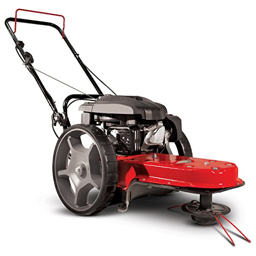 (Earthquake 28463 String Mower, Red/Black)