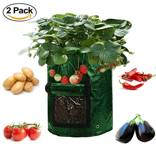 Garden Planter Bag (2-pack) – Grow Vegetables: Potato, Carrot, Tomato, Onion - Plant Tub with Access Flap for Harvesting - Eco-Friendly - Heavy Duty & Durable (Vegetable Garden Compost)