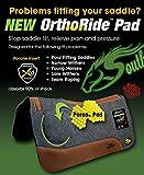 """Southwestern Equine OrthoRide Correction Saddle Pad 1"""" Made in USA"""
