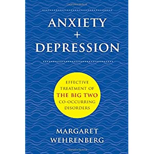 Learn more about the book, Anxiety + Depression: Effective Treatment of the Big Two Co-Occurring Disorders